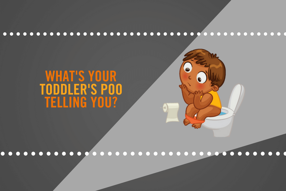 What S Your Toddler S Poo Telling You Infographic Diaresq